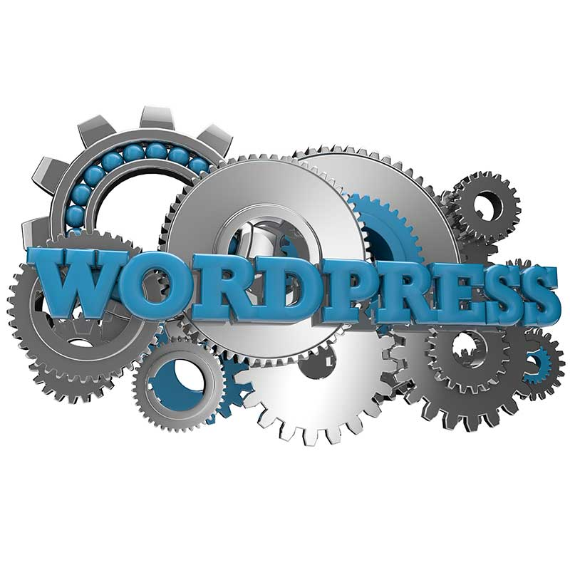 FLYING 'OKOLE WordPress Tune-up image on the WordPress Website Care Plans page.