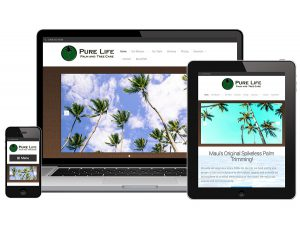 FLYING 'OKOLE website design for Pure Life Palm and Tree Care on the Branding, Websites & Marketing Our Work page.